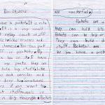 Lillian's Pockets Children's Letter
