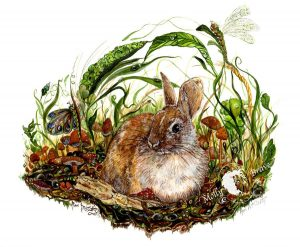 Rabbit In A Dream Giclée Print