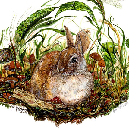 Rabbit In A Dream Watercolor Painting